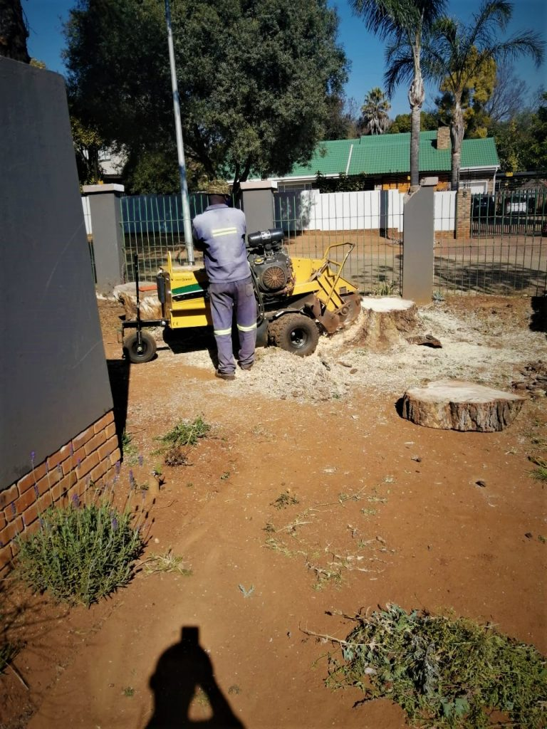 stump removal harare